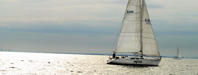 Things to Do at America's Cup